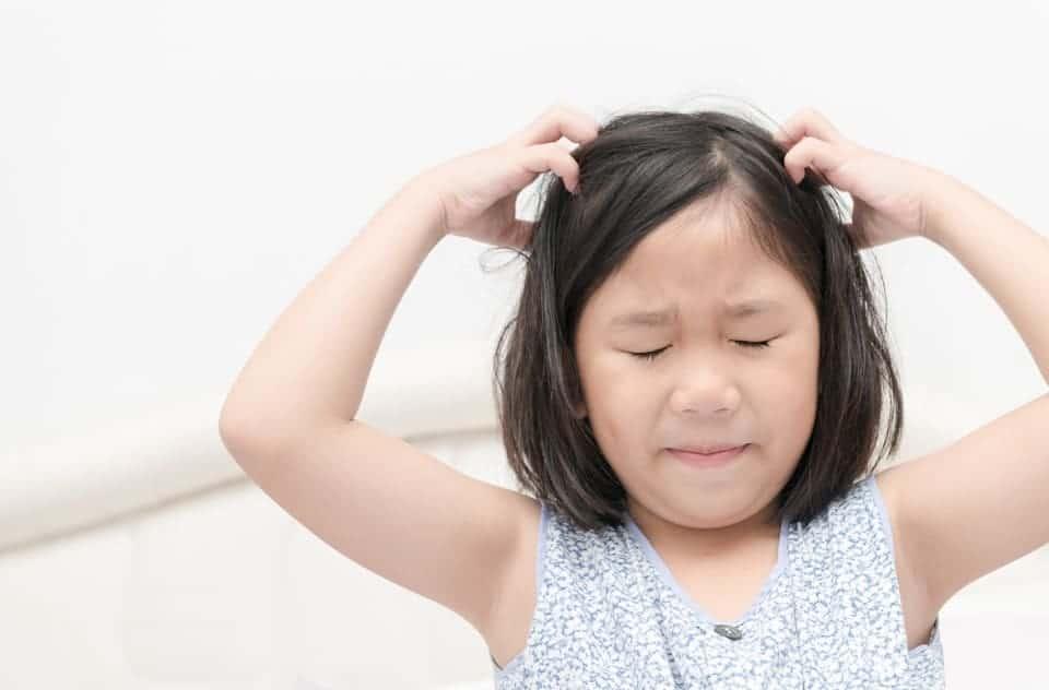 Kopfläuse: Was tun bei Kopflaus-Befall
