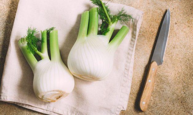 Beikost ab 6. Monat: Fenchel-Kartoffelbrei mit Pute