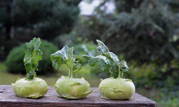 Pommes aus Kohlrabi: Kleiner Trick für Gemüsemuffel