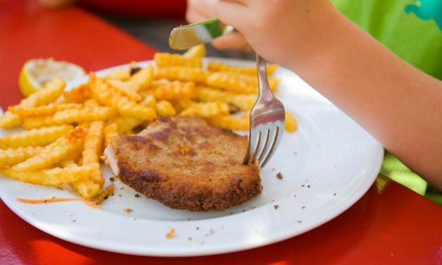 Portionierte Teller fördern Übergewicht bei Kindern
