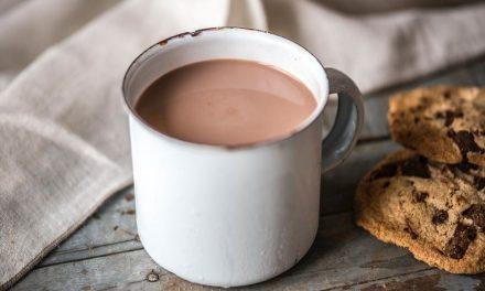 Hafercookies – idealer Pausensnack