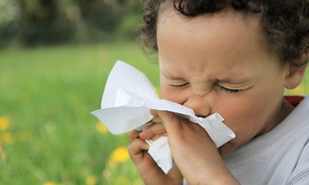 Wie kann man Allergien vorbeugen?