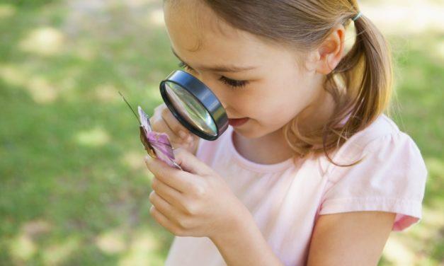 Wahrnehmungsspiele zum Förderung des Seh-Sinns