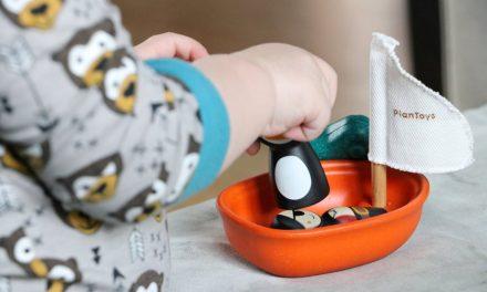 Spielzeug fördert spielend die Fähigkeiten der Kinder