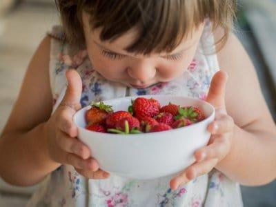 Wie zuechtet man Erdbeeren im Garten?