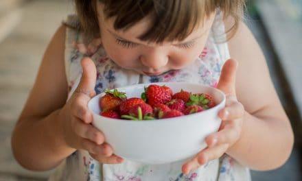 Wie züchtet man Erdbeeren im Garten?