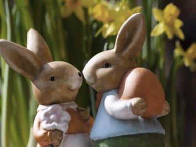 Gute-Nacht-Geschichte: Soffi trifft den Osterhasen