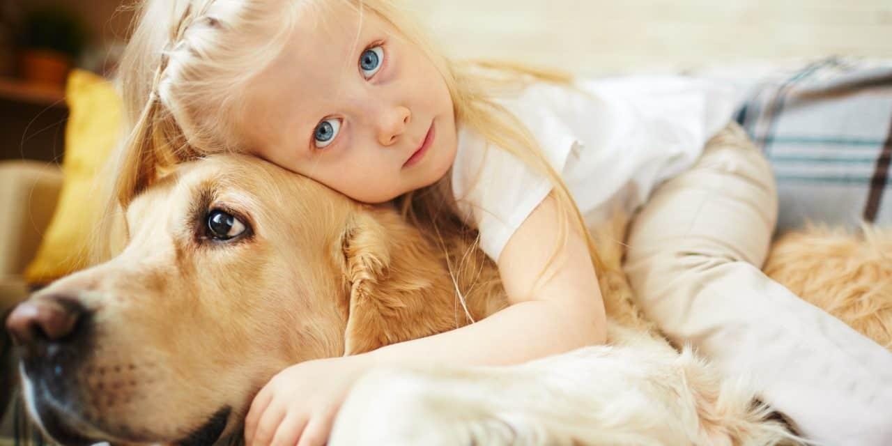 Haustiere fördern die soziale Kompetenz
