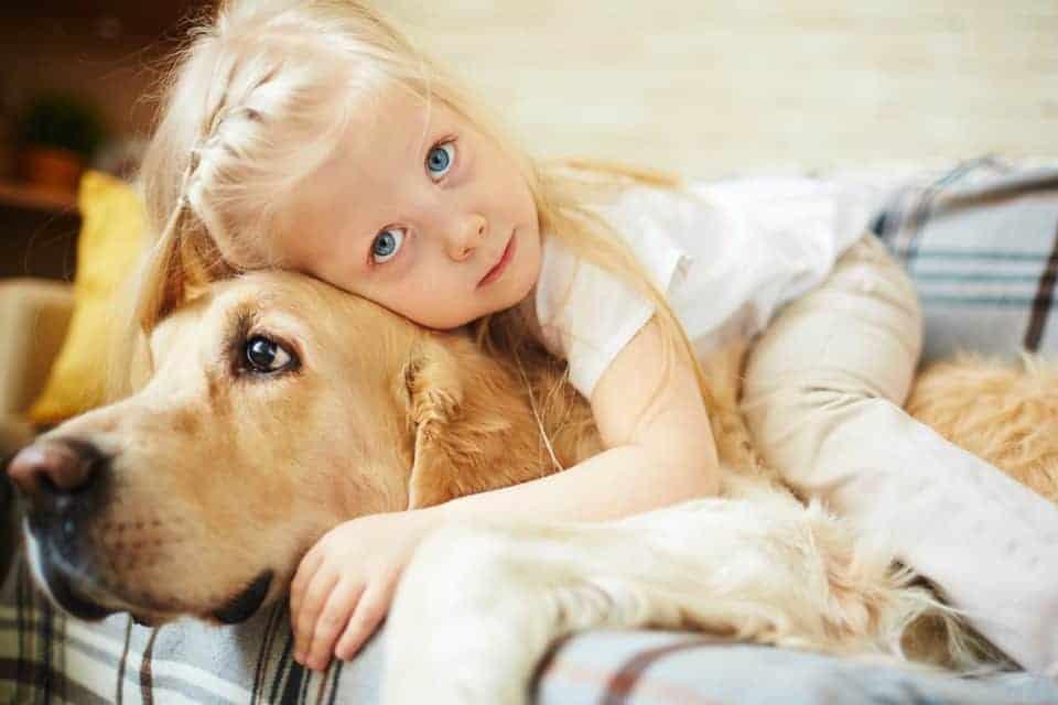 Ein Pro für Haustiere: Denn Tiere fördern die soziale Kompetenz