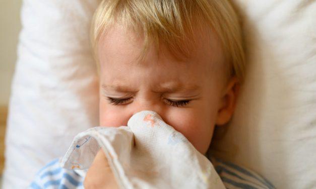 Engelwurzbalsam: So hilft es dem Baby bei Schnupfen