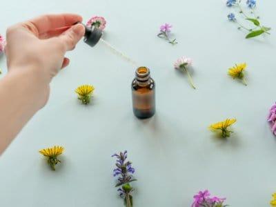 Bachblüten für Kinder: natürliche Hilfe bei seelischem Ungleichgewicht