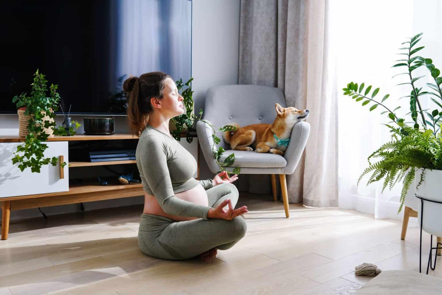 Schwangerschaftsyoga: Mehr Vitalität, Wohlbefinden & Gesundheit. Schwangere beim ausüben von sanften Yoga Asanas.